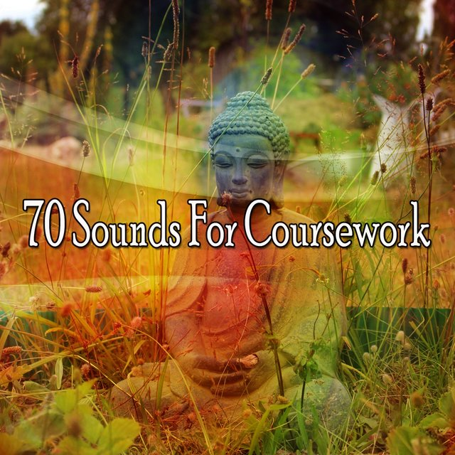 70 Sounds for Coursework