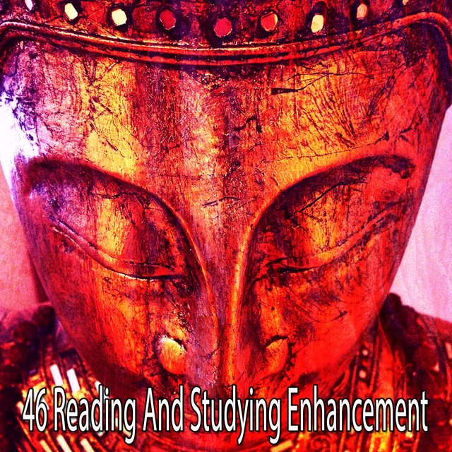 46 Reading and Studying Enhancement