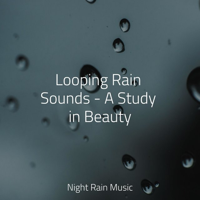 Looping Rain Sounds - A Study in Beauty