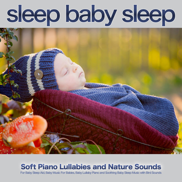 Sleep Baby Sleep: Soft Piano Lullabies and Nature Sounds For Baby Sleep Aid, Baby Music For Babies, Baby Lullaby Piano and Soothing Baby Sleep Music with Bird Sounds