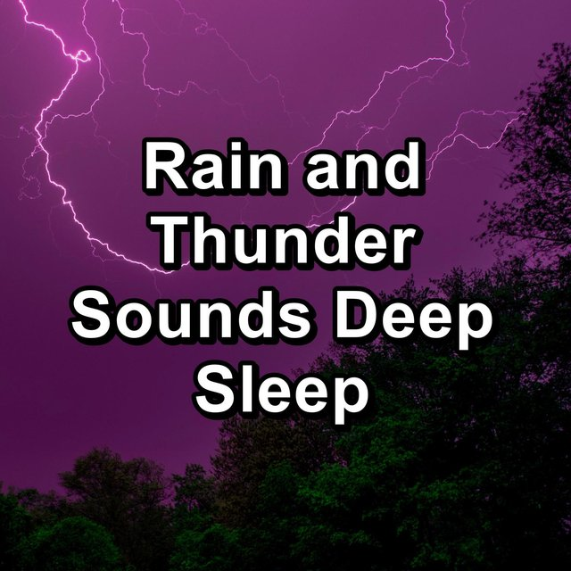 Rain and Thunder Sounds Deep Sleep