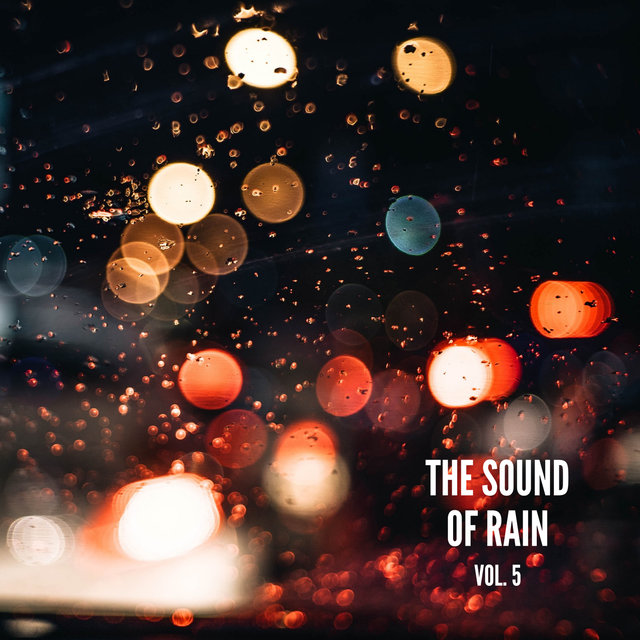 The Sound of Rain Vol. 5, Library of Thunder and Lightning Storms