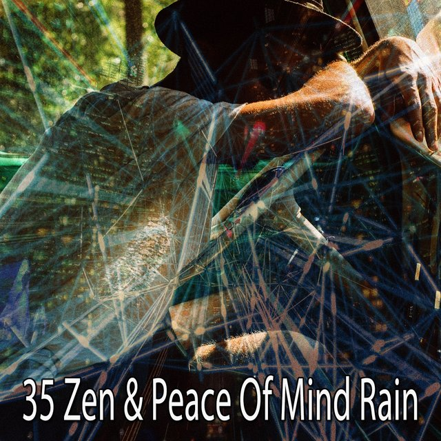 35 Zen & Peace of Mind Rain