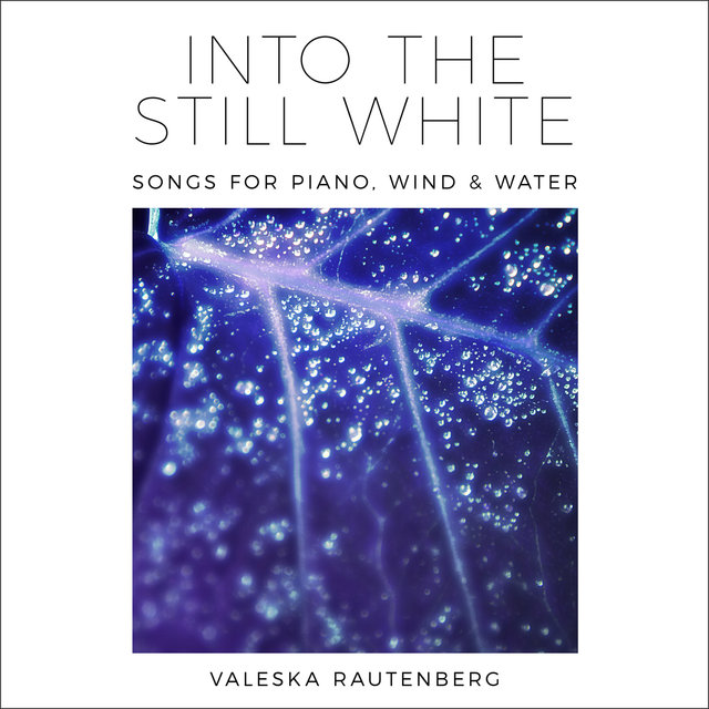 Into The Still White (Songs For Piano, Wind & Water)