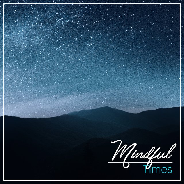 # 1 Album: Mindful Times