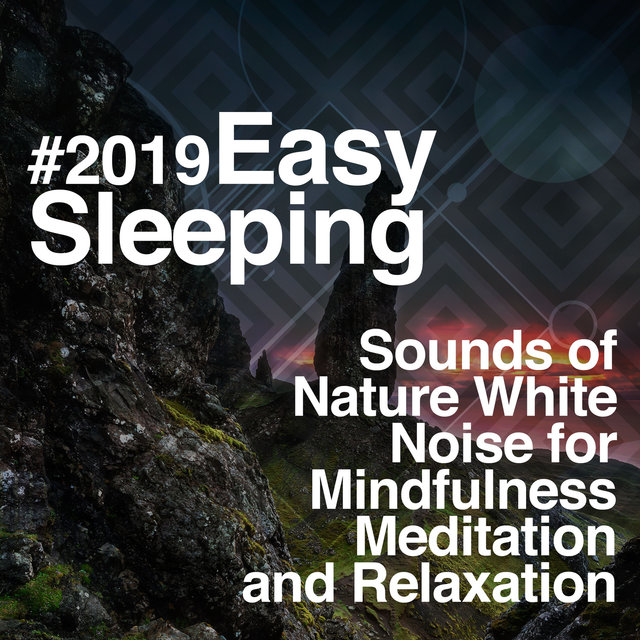 # 2019 Easy Sleeping