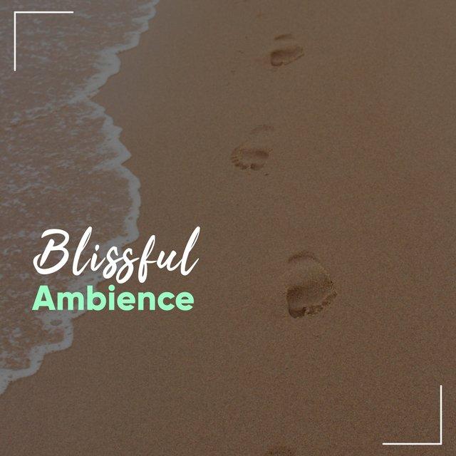 # Blissful Ambience