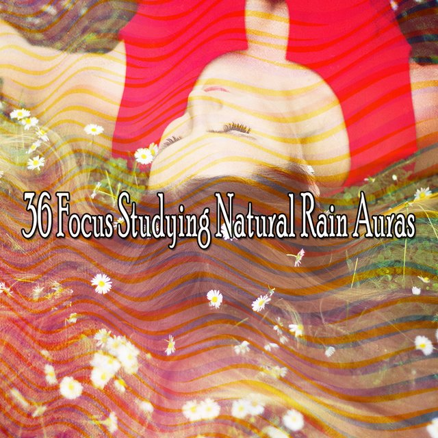 36 Focus Studying Natural Rain Auras