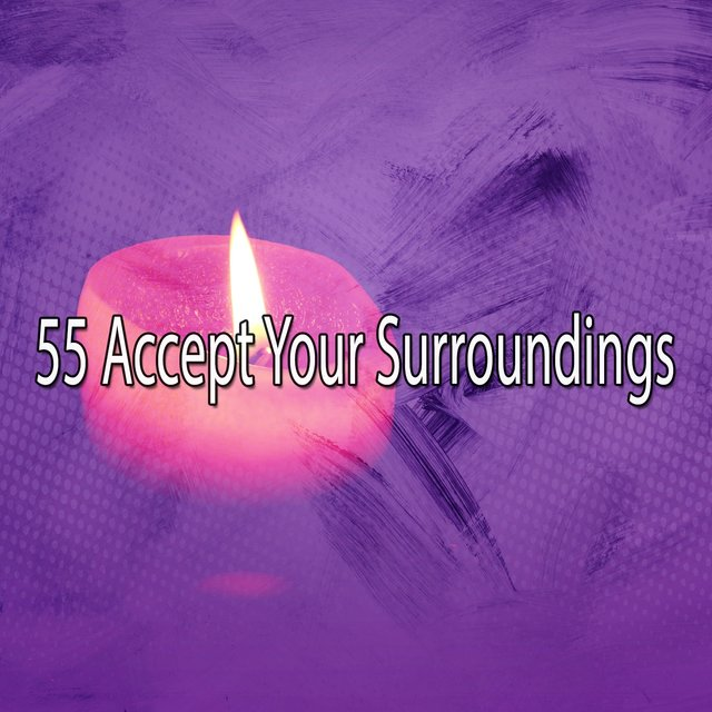 55 Accept Your Surroundings