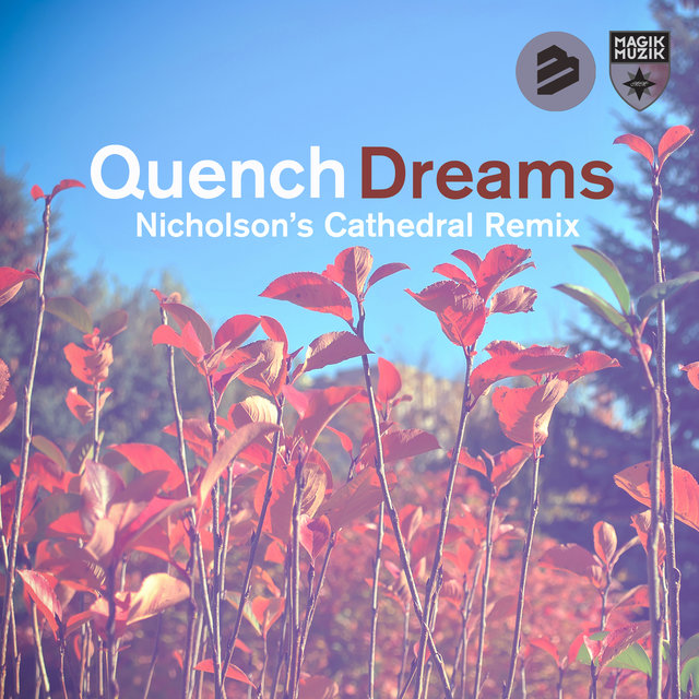 Dreams(Nicholson's Cathedral Remixes)