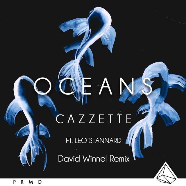 Oceans (feat. Leo Stannard) [Dave Winnel Remix]
