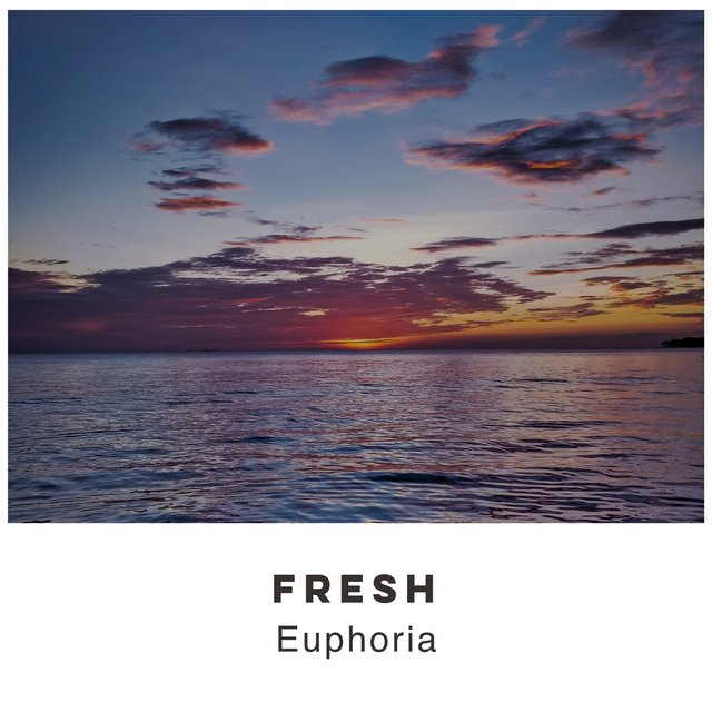 # 1 Album: Fresh Euphoria
