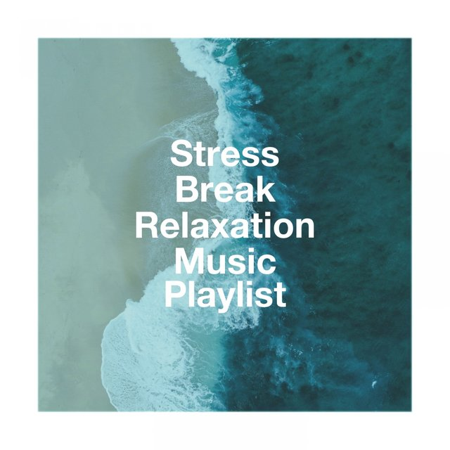 Stress Break Relaxation Music Playlist