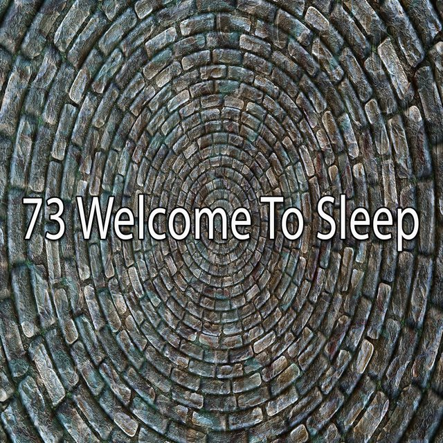 73 Welcome to Sleep