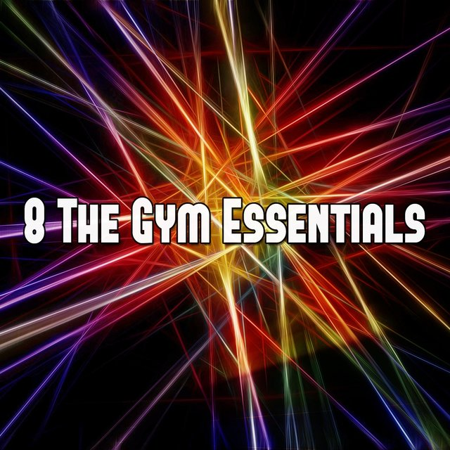 8 The Gym Essentials