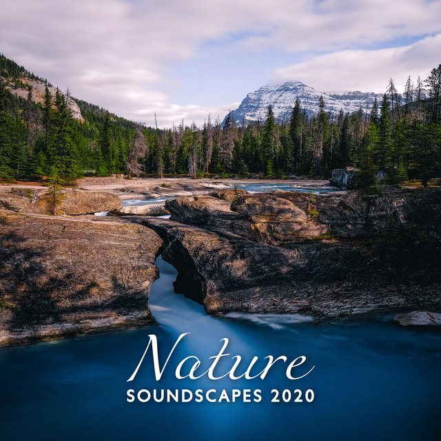 Nature Soundscapes 2020