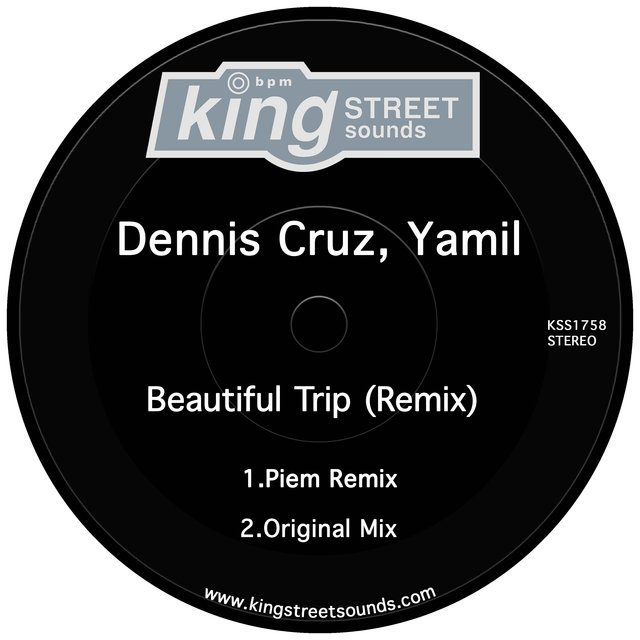 Beautiful Trip (Remix)