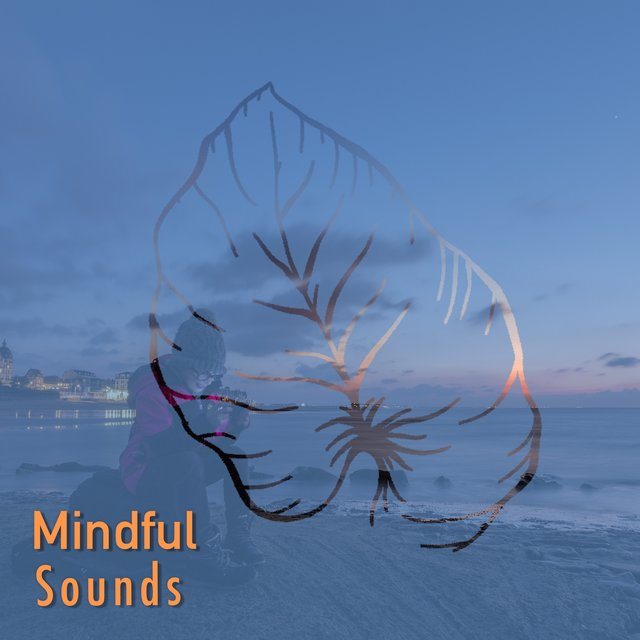 # Mindful Sounds