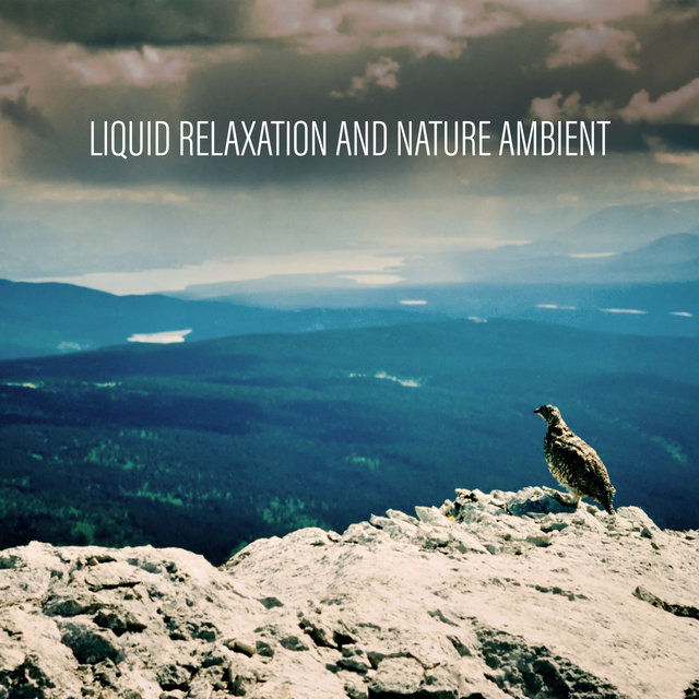 Liquid Relaxation and Nature Ambient - Peaceful Background Music to Relax