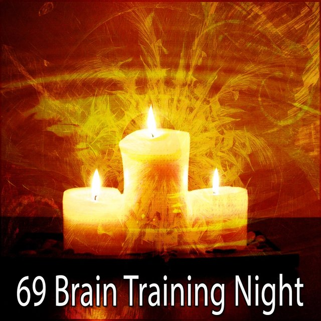 69 Brain Training Night