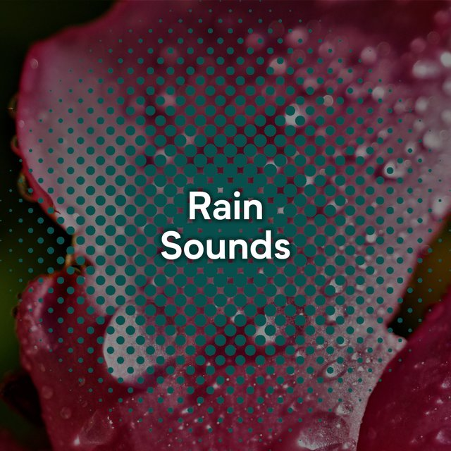 Quiet Rain Relief Sounds