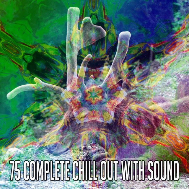 75 Complete Chill out with Sound