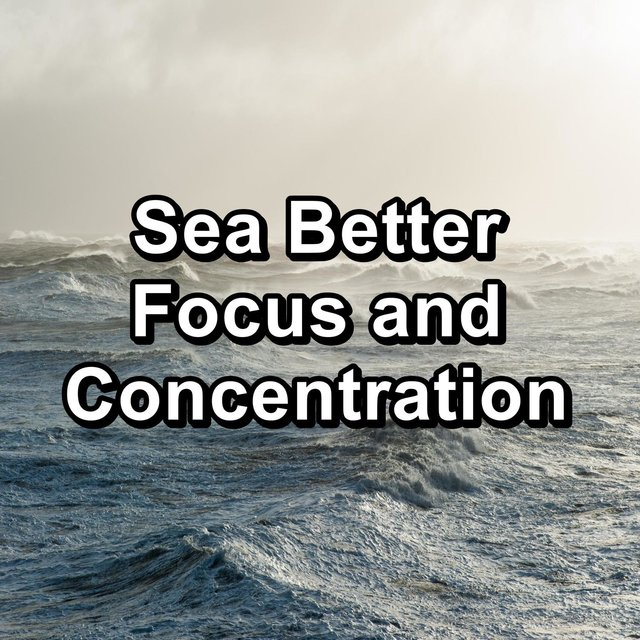 Sea Better Focus and Concentration