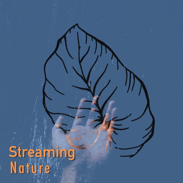 # 1 Album: Streaming Nature