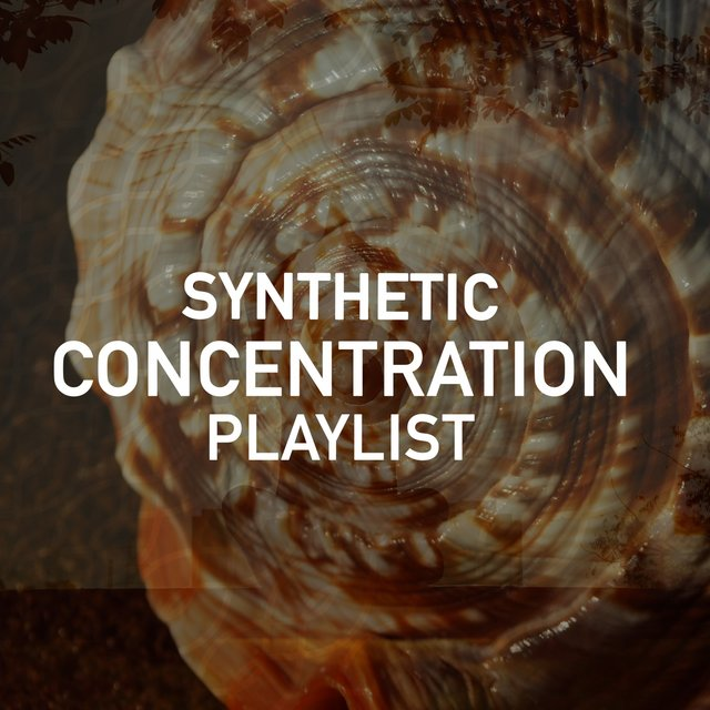 Synthetic Concentration Playlist