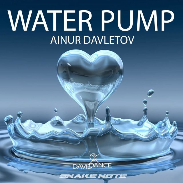 Water Pump - Single