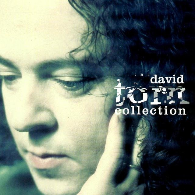 The David Torn Collection