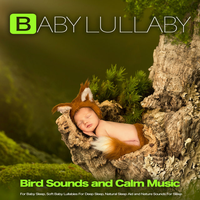 Baby Lullaby: Bird Sounds and Calm Music For Baby Sleep, Soft Baby Lullabies For Deep Sleep, Natural Sleep Aid and Nature Sounds For Sleep