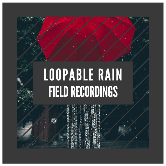 """ Relaxing Loopable Rain & Thunder Field Recordings """