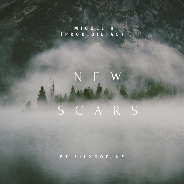 New Scars (feat. Lilxcodine)