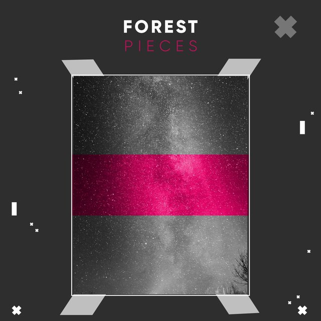 Reflective Ambient Forest Pieces