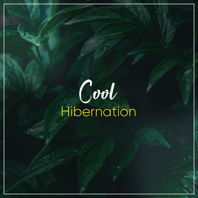 # Cool Hibernation