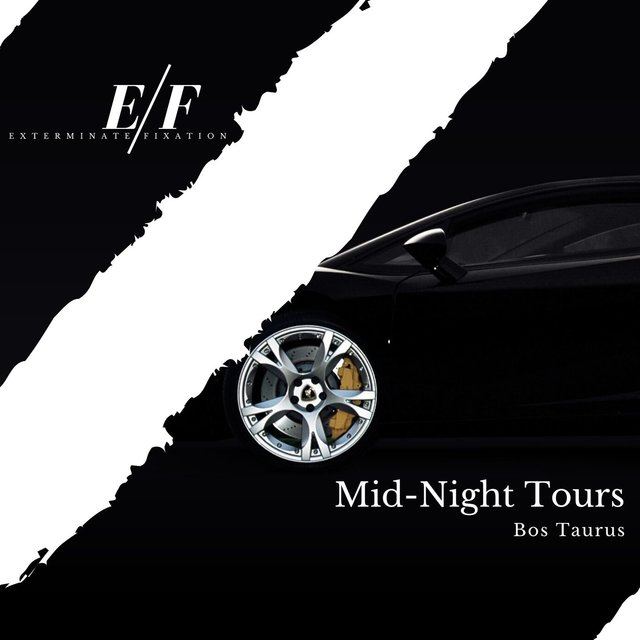 Mid-Night Tours - 2020 Dubstep Music