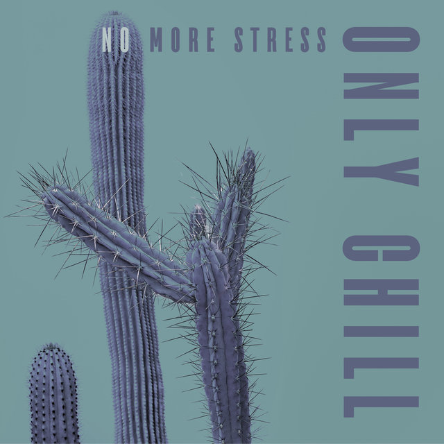 No More Stress Only Chill