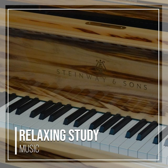 Relaxing Study Therapy Music