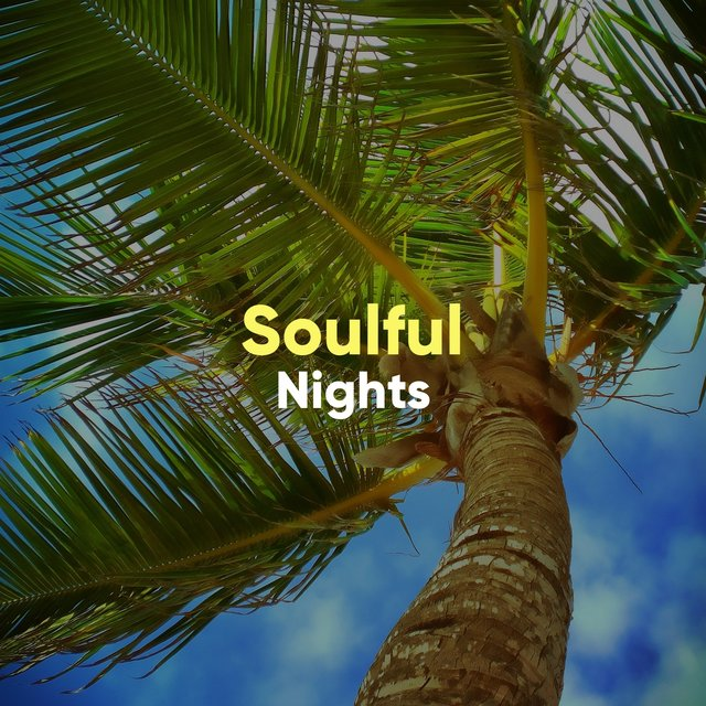 # 1 Album: Soulful Nights