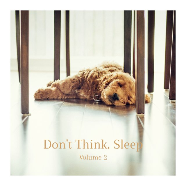 Don't Think. Sleep, Vol. 2