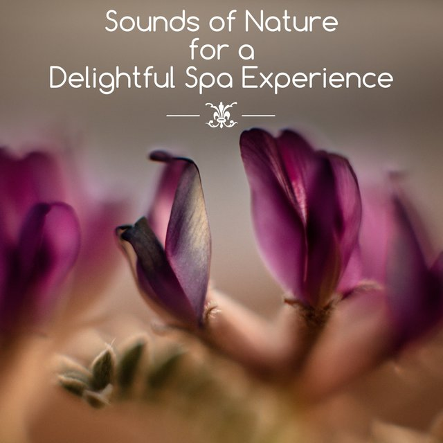 Sounds of Nature for a Delightful Spa Experience