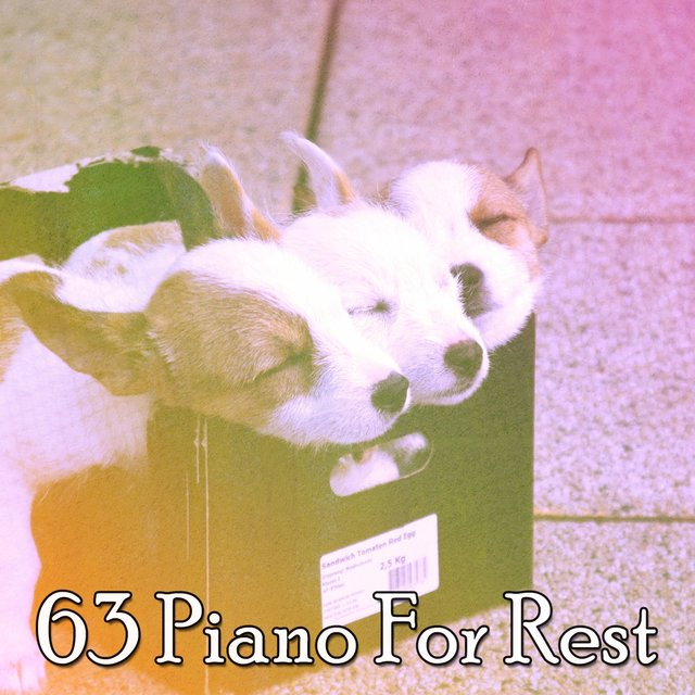 63 Piano for Rest