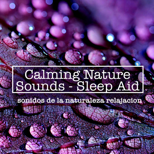 Calming Nature Sounds - Sleep Aid