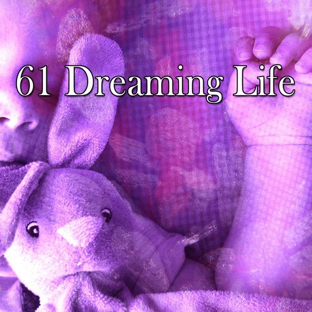 61 Dreaming Life