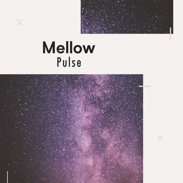 Mellow Pulse, Vol. 5