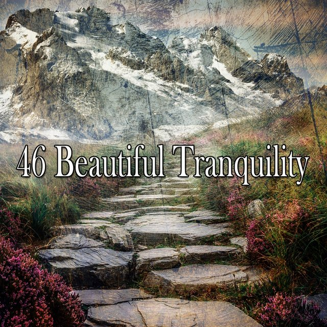 46 Beautiful Tranquility