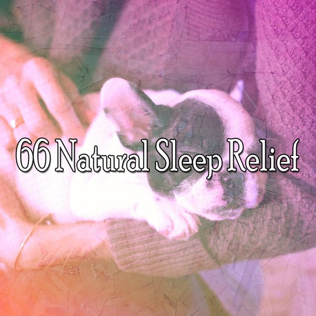 66 Natural Sleep Relief