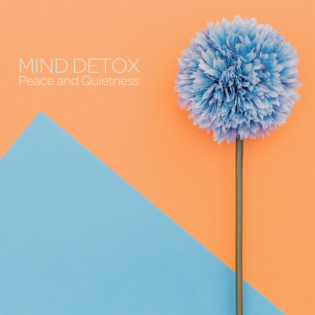 Mind Detox: Peace and Quietness
