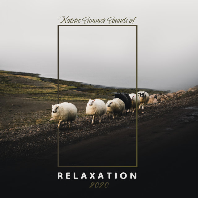 Nature Summer Sounds of Relaxation 2020